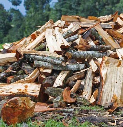 Firewood pile of roughly chopped wood for winter in the countryside